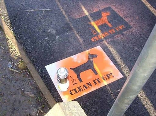 Council dog fouling