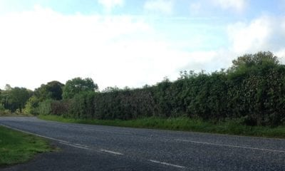 Keady Road