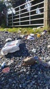 bins tipped 1