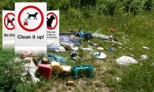 Council are aiming to tackle litter problem