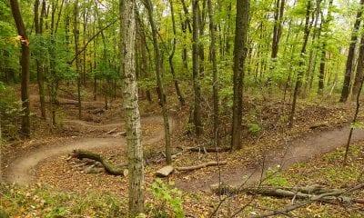 An example mountain bike trail
