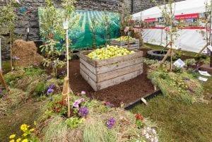 Image of the designed garden