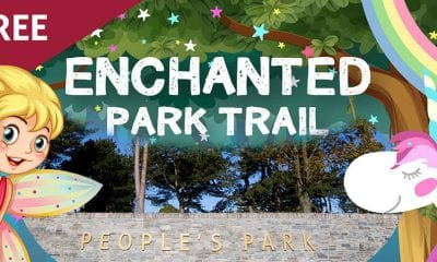 Enchanted Park Trail Portadown