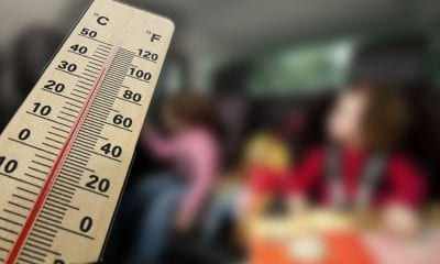 Temperature children car