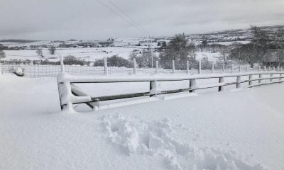 Snow Co Armagh