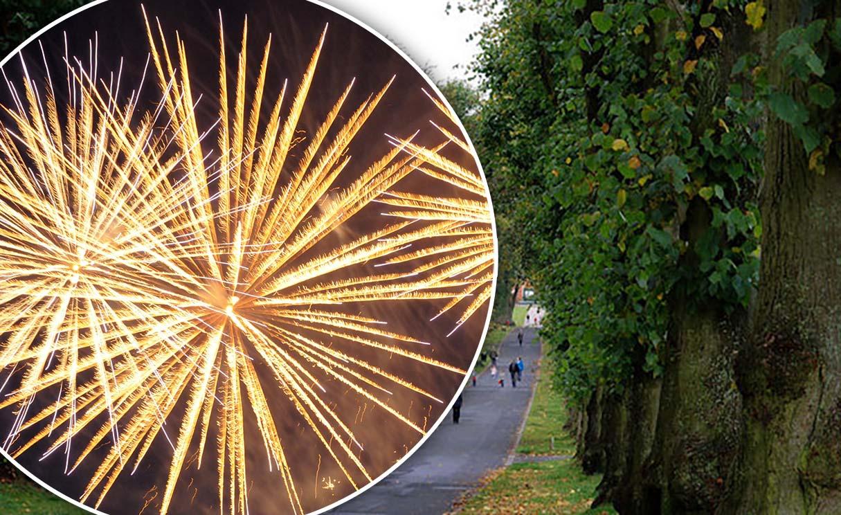 Lurgan Park fireworks