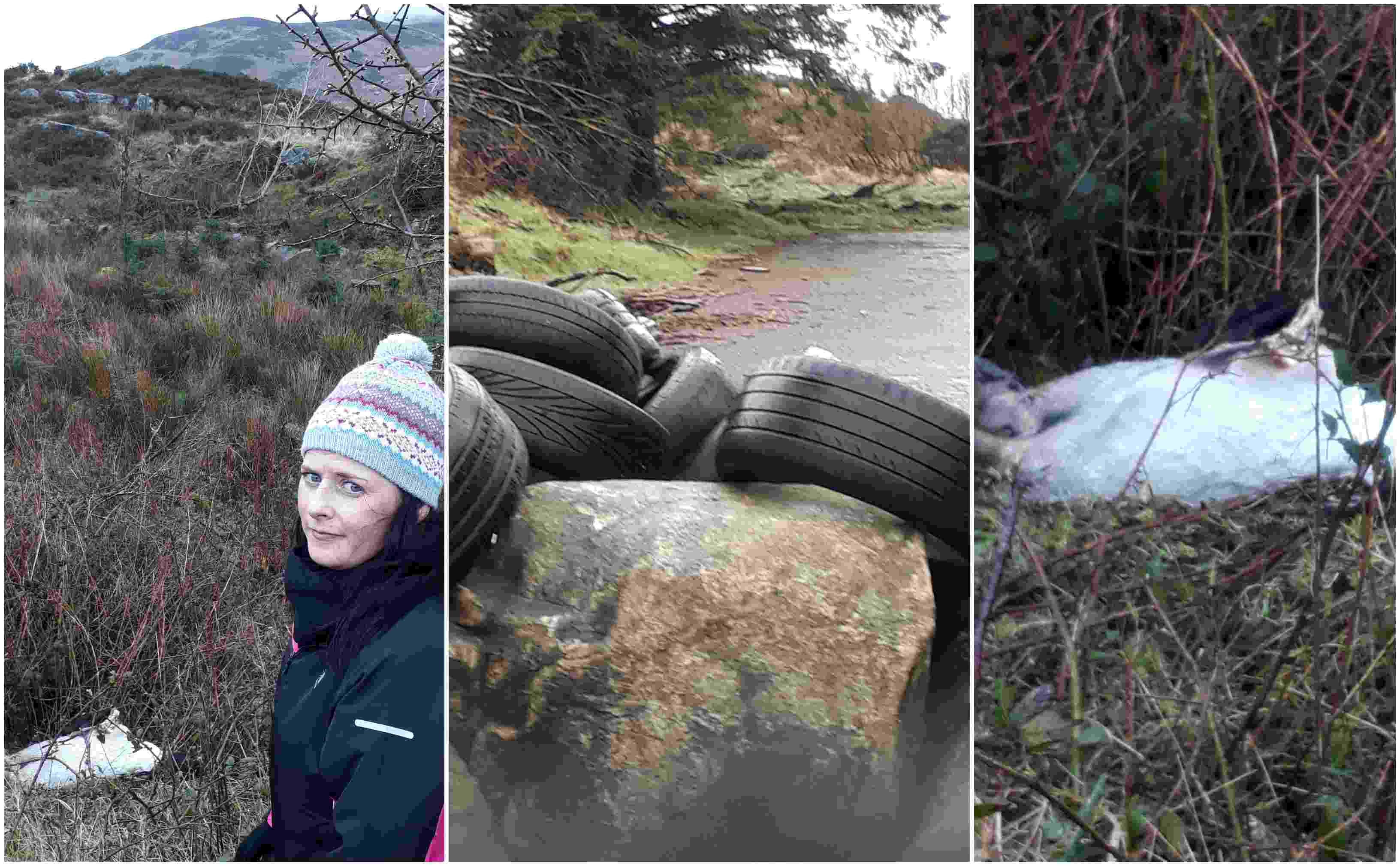 Oonagh Magennis on fly-tipping