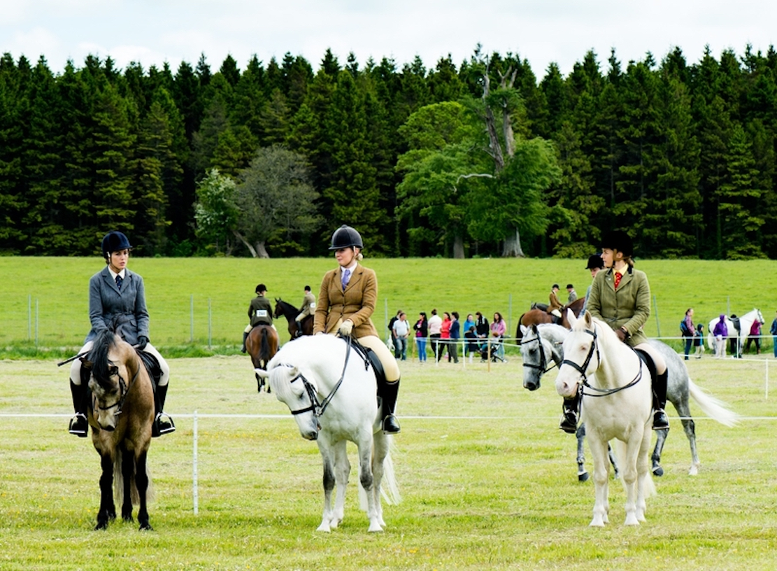 Armagh County Agricultural Show