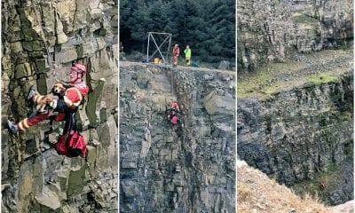 Dog rescue quarry Newtownhamilton