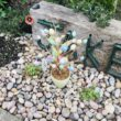Councillor Julie Flaherty's garden tribute to son Jake