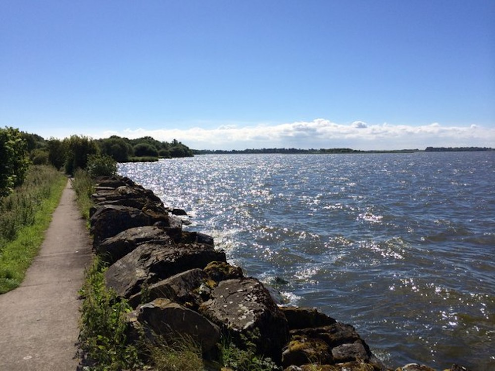 Shore of Lough Neagh at Oxford Island